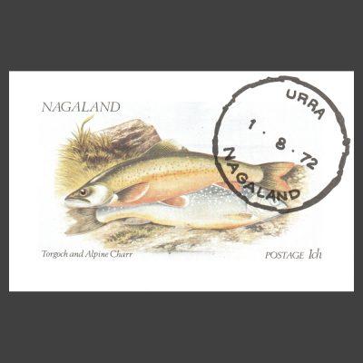 Nagaland 1972 Fish Sheetlet (1ch, CTO)