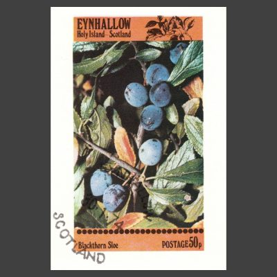Eynhallow / Holy Island 1974 Sloe Sheetlet (50p)